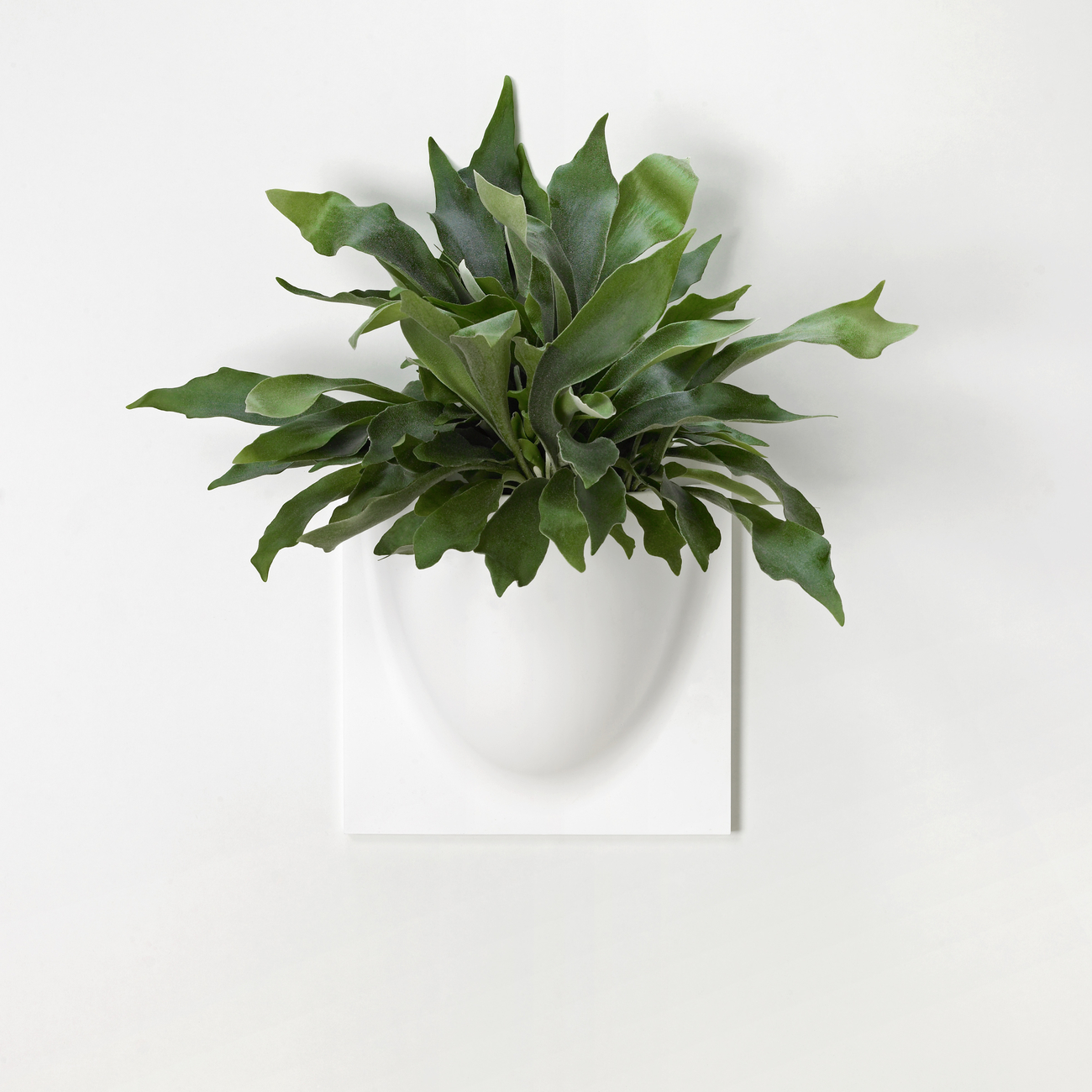 VertiPlants made from Plants